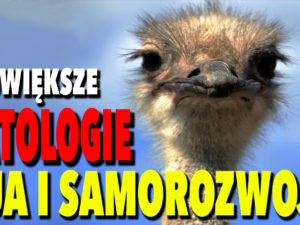 VIDEO – Patologie PUA i Samorozwoju